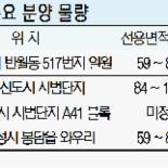 '입지·분양가·인프라 경쟁력' 동탄2 대박 조짐