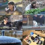 '삼시세끼' 시청률, 최지우-손호준 활약에 자체최고 또 경신