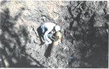 삽으로 3m 땅굴 파 기름 훔친 '현대판 두더지'