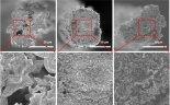 KAIST, 홍합접착제 이용해 성능 높인 그래핀 섬유 개발