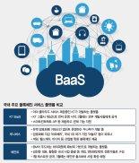 개발기술 빌려주는 BaaS 봇물… 블록체인판 아마존 노린다