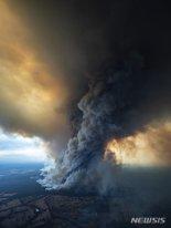 디카프리오 재단, 호주 산불 진화 위해 35억원 '쾌척'