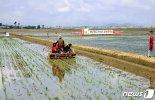 北 올해도 곡물 90만톤 부족 식량난, 코로나19에 '가중'