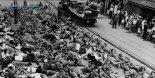 정부, 남북 유엔 가입 30주년 기념 기록집 발간