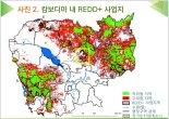 """산림청""""'REDD+로 캄보디아 산림훼손 5년간 30%줄어"""""""