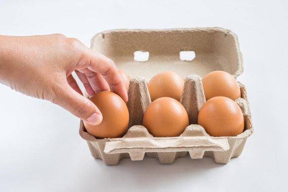 [그것을 알려주마] 왕란은 뭐고, 특란은 뭐지?.. 달걀에 숨겨진 비밀