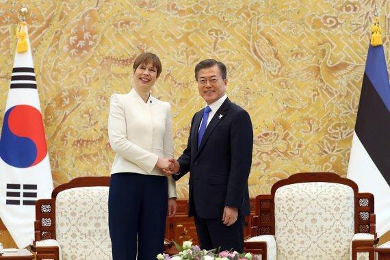 文대통령, 에스토니아 대통령과 '디지털 협력' 논의