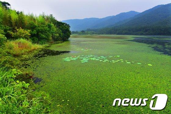역사적‧지질학적‧생태적 '가치' 고창운곡습지, 부안 채석강 유네스코 도전