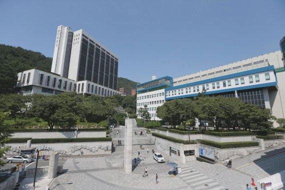 동아대 약학대학 유치 총력