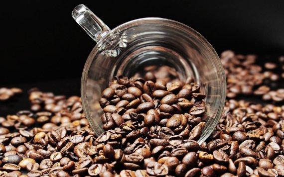 뭘로 만들었길래.. 커피 한잔에 50만원'