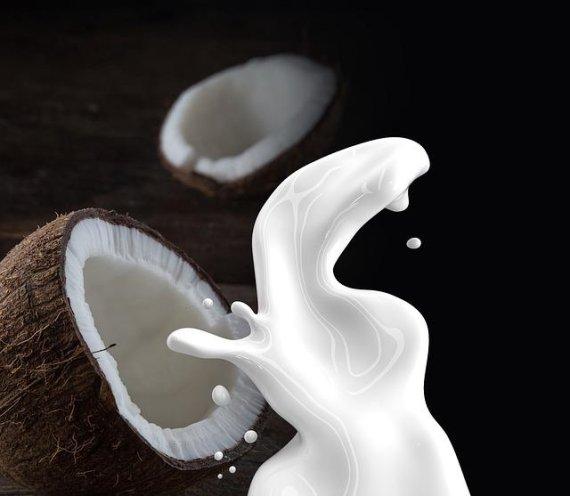 코코넛 우유 마시면 가슴 커진다?