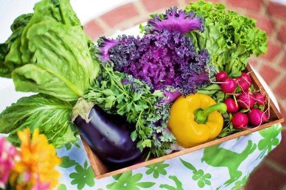 씻은 채소, 실온에 보관하면 위험한 이유