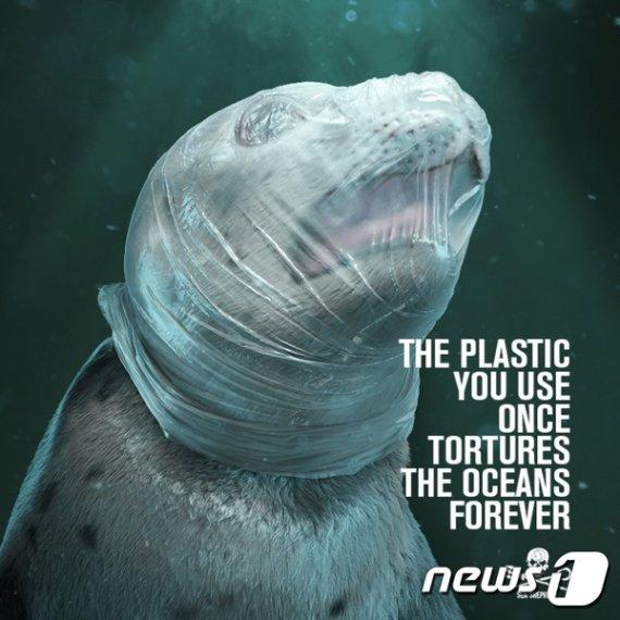"""""""실제 바다에서 마주하는 장면"""" 고통속에 죽어가는 해양동물들"""