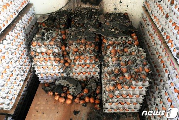 하루 아침에 전재산 잃은 속초 주민들, 40년간 노력 '물거품'