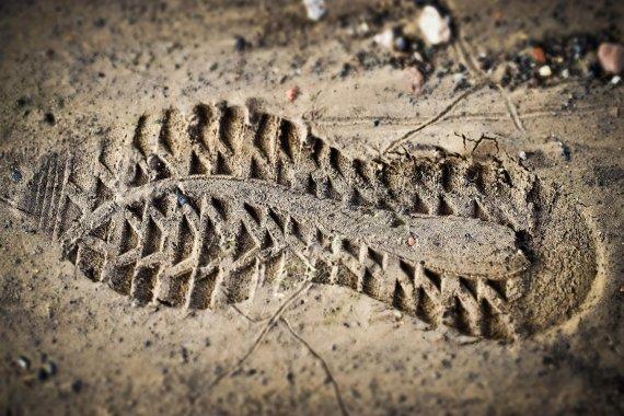 하이킹 중 실종된 남녀, 5일만에 구조된 사연