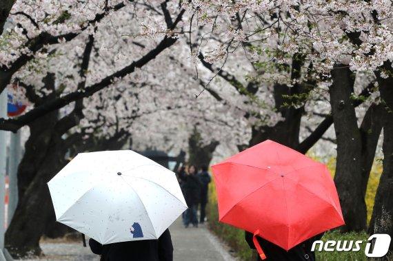 """포항, 영천 낮 최고 27도.. """"이게 봄이냐"""""""