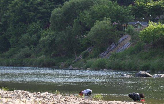 [네모이야기] 초여름 강가의 풍경