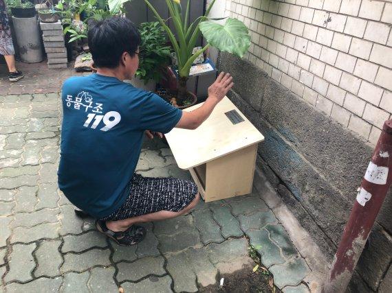동물구조119, 종로 월하공원에 길고양이 급식소 설치