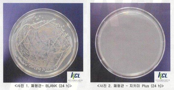 모자이크홀딩스, '바이러스 패치' 폐렴균 제거율 99.9% 효능 입증