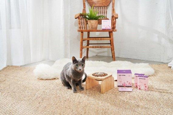 큐옴바이오, 유산균 3000억 마리 넣은 고양이 영양제 출시