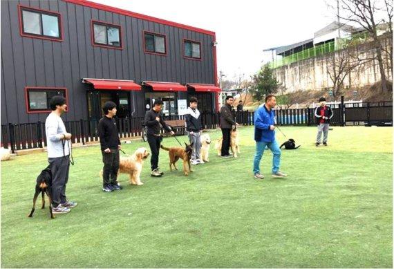 블록펫, 반려동물이 일하는 회사 '펫컴퍼니' 비앱 오픈