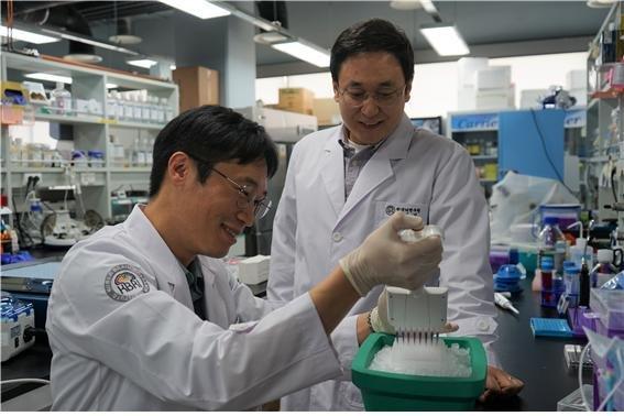 치매 환자 혈액속 특별한 단백질 발견… 진단키트 개발 계획