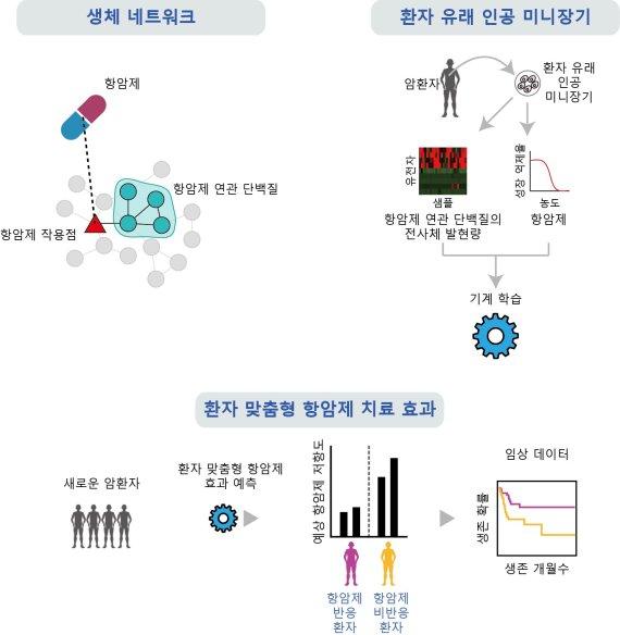 AI로 환자 맞춤형 항암제 찾아 치료한다