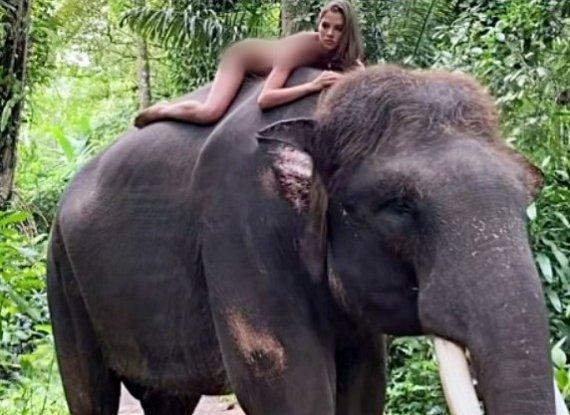 """벌거벗은채 코끼리 올라탄 러 여성..""""돈에 눈이 멀었다"""" 비난 쇄도"""