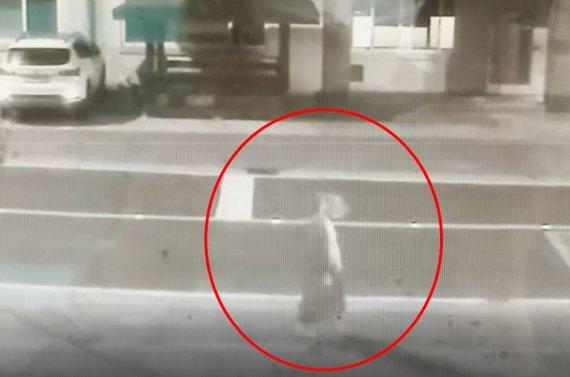 여고생 사물함에 '죽은 토끼' 넣고 간 용의자, CCTV 봤더니..