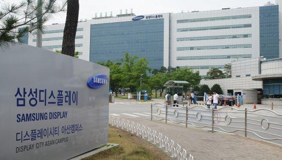 삼성디스플레이, '초고해상도 산화물 TFT 개발' 국책 과제 주관 기업 선정
