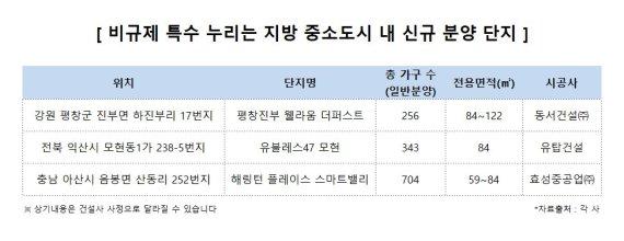 '비규제지역' 지방 중소도시 부동산 활황