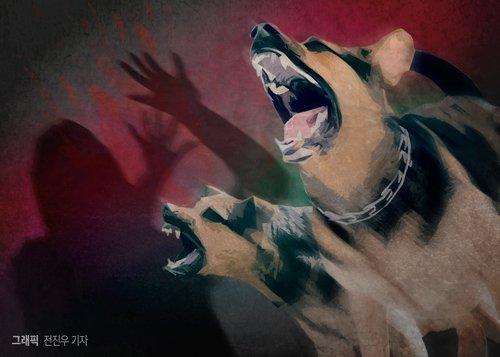 개 짖는 소리에 달아나다 계단 굴러 뇌수술…견주 처벌가능할까?