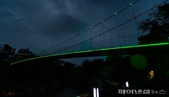 [네모이야기] 초록빛 희망을 전하는 생명나눔 그린라이트