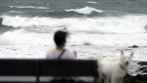 [오늘의 날씨]전북(16일, 목)…태풍 '찬투' 밤부터 비, 강풍 조심
