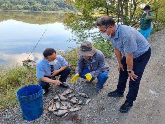 이호중 낙동강유역환경청장, 물고기떼 폐사현장 점검