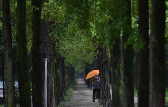 대구·경북 오후부터 비…낮 18~24도